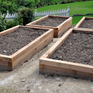 Raised beds!  Raised beds!